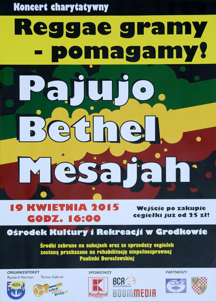 plakat - koncert charytatywny reggae_net