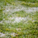 Murawa w na Stadionie Miejskim w Grodkowie była pełna wody